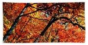 Autumn Wonder Beach Sheet