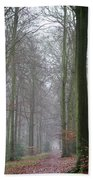Autumn Woodland Avenue Beach Towel