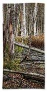Autumn Woodland Marsh Scene Beach Towel