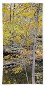 Autumn Woods 2 Beach Towel