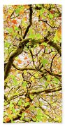 Autumnal Colours Beach Towel