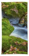 Autumn's Creek 2 Beach Towel