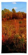 Autumns Field Beach Towel