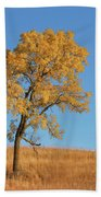 Autumn's Gold - No 1 Beach Towel