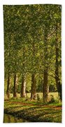 Avenue Of Trees On The Kennet And Avon Canal Beach Towel