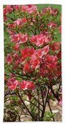 Azalea Bush 2  Beach Towel