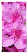 Azalea Floral Garden Fine Art Photography Baslee Troutman Beach Towel