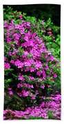 Azalea Waterfall At The Azalea Festival Beach Towel