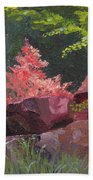 Azaleas - Sun And Shadow Beach Towel