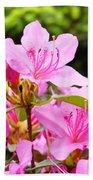 Azaleas Pink Azalea Flowers Artwork 12 Landscape Art Prints Beach Towel
