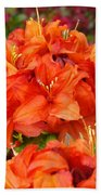 Azaleas Rhodies Art Prints Azalea Flowers Giclee Baslee Troutman Beach Towel