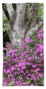 Azaleas With Tree Beach Towel