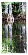 Babcock Wilderness Ranch - Alligator Lake Reflections Beach Towel