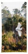 Babcock Wilderness Ranch - Gliding Great Egret Beach Towel
