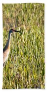 Babcock Wilderness Ranch - Sandhill Crane Beach Towel