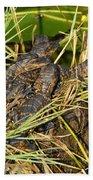 Baby Alligators Beach Sheet