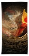 Baby Bird In The Nest With Mouth Open Beach Towel