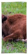 Baby Bison Beach Towel