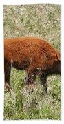 Baby Bison Beach Towel