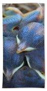 Baby Bluebirds Beach Towel