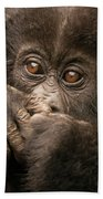 Baby Gorilla Close-up Hiding Mouth With Hands Beach Towel