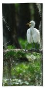 Baby Great Egrets With Nest Beach Towel