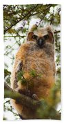 Baby Great Horned Owl Beach Towel