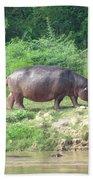 Baby Hippo 1 Beach Towel
