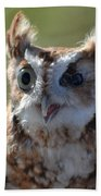 Cute Screetch Owl Beach Towel