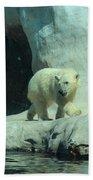 Baby Polar Bear Beach Towel