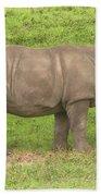 Baby Rhino Chilling Beach Towel