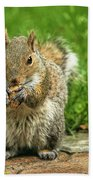 Baby Squirrel's First Peanut Beach Towel