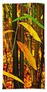 Baby Tree Foliage Beach Towel