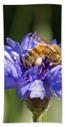 Bachelor Button And Bee Beach Towel