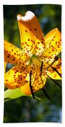Back-lit Yellow Tiger Lily Beach Towel