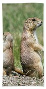 Back To Back Prairie Dogs Beach Towel