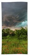 Back To Life - Spring Returns To Western Texas Beach Towel