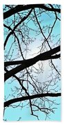 Backlit Tree Beach Towel