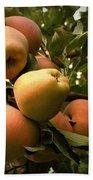 Backyard Garden Series - Apples Cluster Beach Sheet