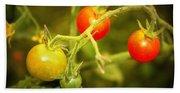 Backyard Garden Series - Cherry Tomatoes Beach Towel