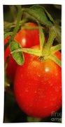Backyard Garden Series - Roma Tomatoes Beach Towel