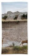 Badlands Deer Sd Beach Towel