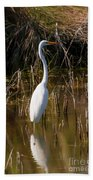Bailey Tract Egret Two Beach Towel