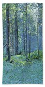 Balaam.thick Of The Forest Beach Towel