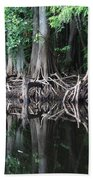 Bald Cypress Trees Along The Withlacoochee River Beach Towel