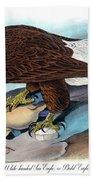 Bald Eagle Audubon Birds Of America 1st Edition 1840 Royal Octavo Plate 14 Beach Towel