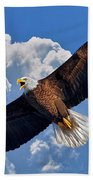 Bald Eagle In Flight Calling Out Beach Towel
