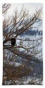 Bald Eagle Perched-signed-#4008 Beach Towel