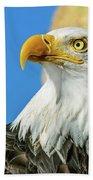Bald Eagle Profile 4 Beach Towel