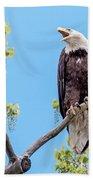 Bald Eagle Warning Beach Towel